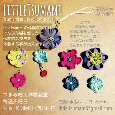 TsumamiArt Lesson